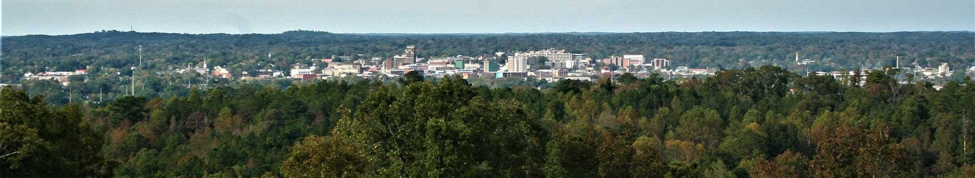 An aerial view of a vast amount of trees surrounding the city of Meridian.